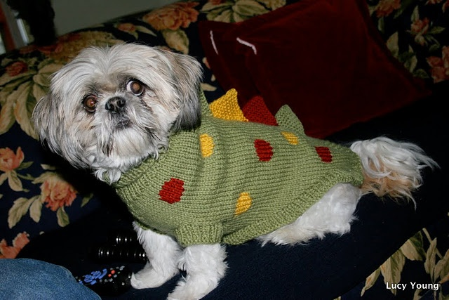 Patons Knitting Patterns For Dogs : Pin by Luciana (Ariel) on My Knitting & Crochet Pinterest