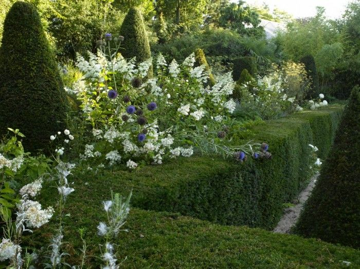 agapanthus gardens grigneuseville normandy alexandre thomas images frompo. Black Bedroom Furniture Sets. Home Design Ideas