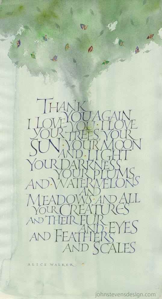 alice walker writings