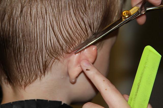 Tips for cutting little boys hair.