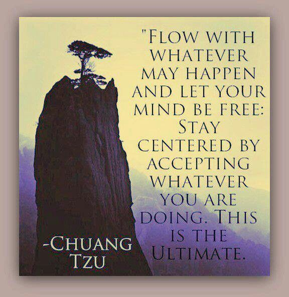 chuang tzu We cannot express that understanding in words, we cannot analyze it logically,  we can only apprehend it and enact it that's what zhuangzi is.