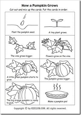 youtube halloween pumpkin song