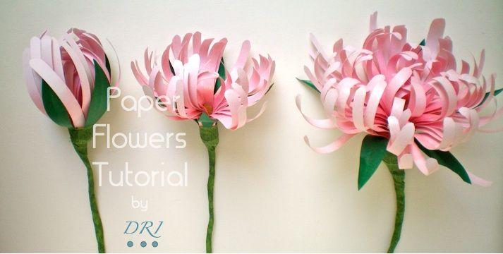paper chrysanthemums tutorial.
