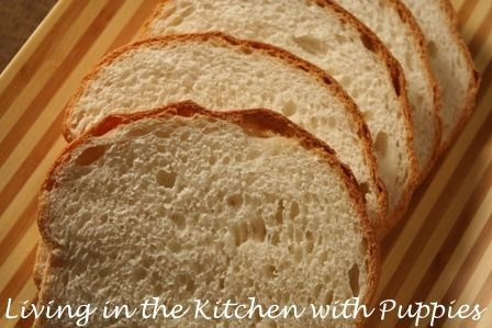 ... Puppies: Basic White Bread. Trying to find a great white bread recipe