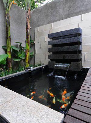 kolam koi inspirasi rumah pinterest
