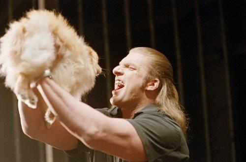 Triple H, WWE,