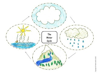 water cycle sequencing cards   Spring Preschool Ideas   Pinterest
