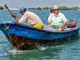 Travel to exotic Cartagena, Colombia where Andrew gets a taste of caiman, capybara and more.