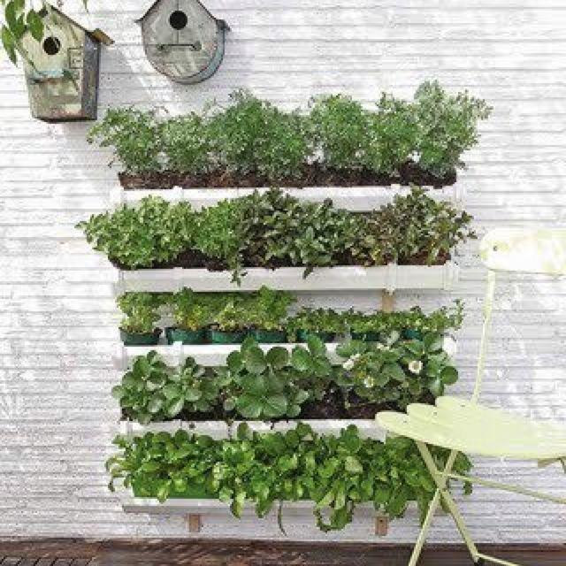 Vertical Herb Garden Outside Pinterest