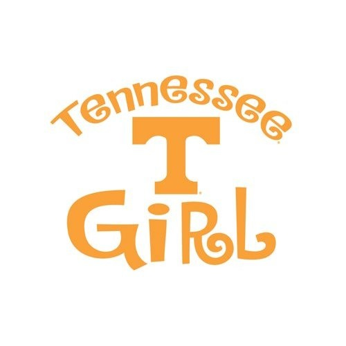 university of tennessee admissions essay