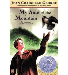 my side of the mountain essay