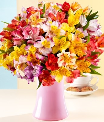 proflowers flowers reviews