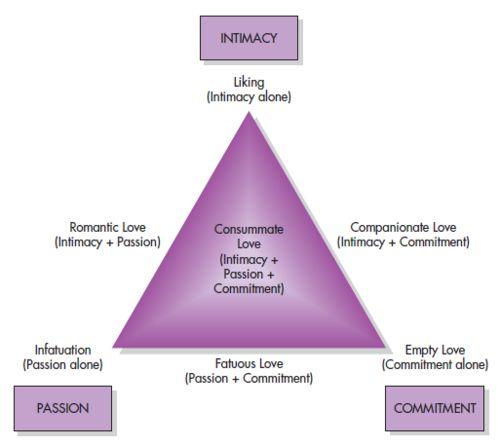 love in psychology essay