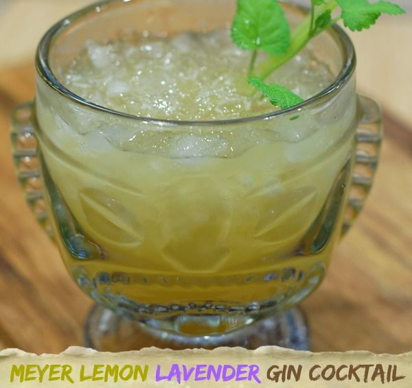 Easy and Refreshing Meyer Lemon Lavender Gin Cocktail