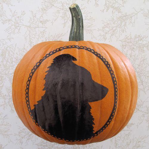 Silhouette On Pumpkin