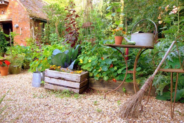 Edible landscaping garden back pinterest for Edible garden ideas
