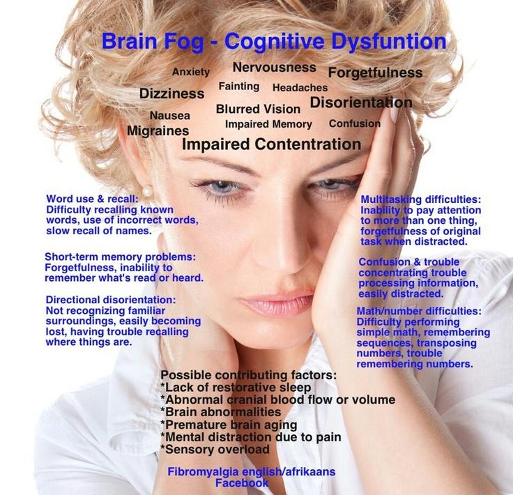 Brain food breakfast before exam photo 3