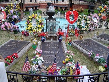 Elvis in Graceland   ELVIS ,ELVIS   Pinterest