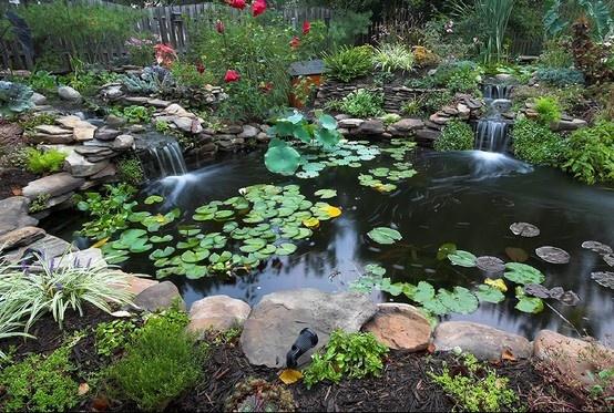 Beautiful Pond Landscaping Outdoor Design Pinterest