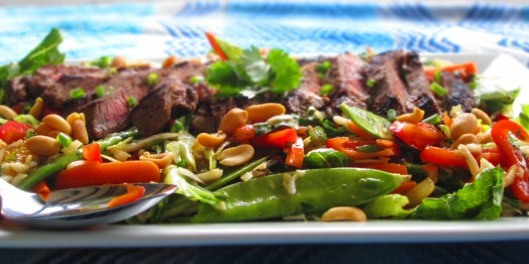 Asian Beef Salad with Seasame Orange Ginger Vinaigrette - Primary ...