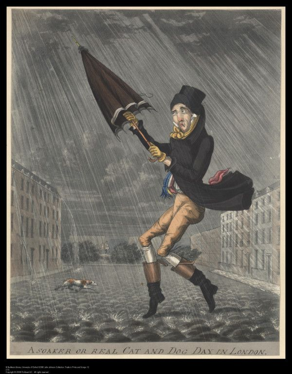 A Soaker, or Real Cat and Dog Day in London