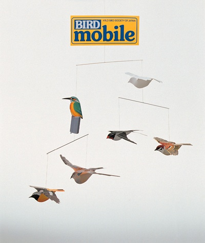 alaska birding society