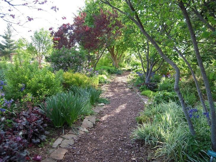 Shade garden rock edged path shade garden pinterest for Rock garden designs shade