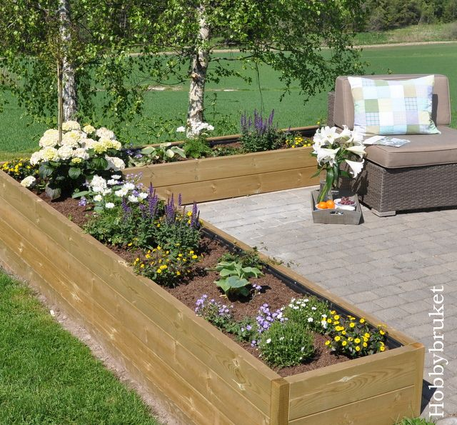 Raised flower bed jardines pinterest for Flowers for flower beds
