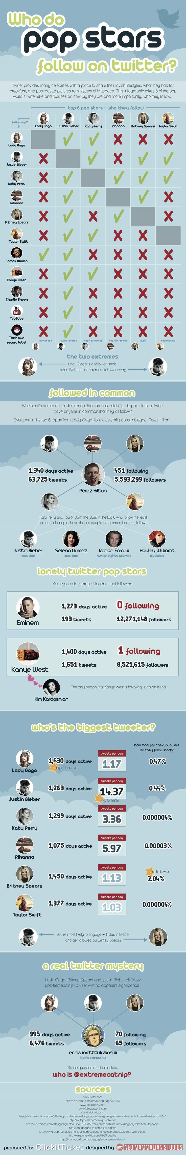 Who Do Pop Stars Follow On Twi