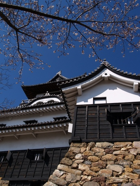 Inuyama Japan  city pictures gallery : Inuyama Castle, Aichi, Japan | Japan | Pinterest