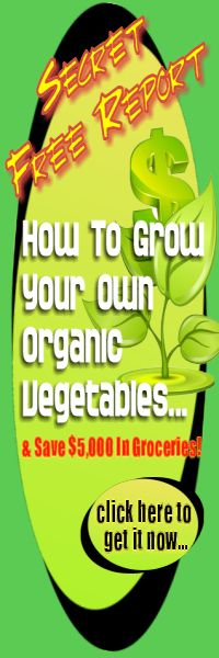 Vegetable planting schedule for zone 6 farmville wall - Vegetable garden planting guide zone 6 ...
