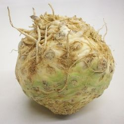 Celeriac (Celery Root) Recipes | Healthy | Pinterest