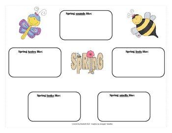 essay on the 5 senses