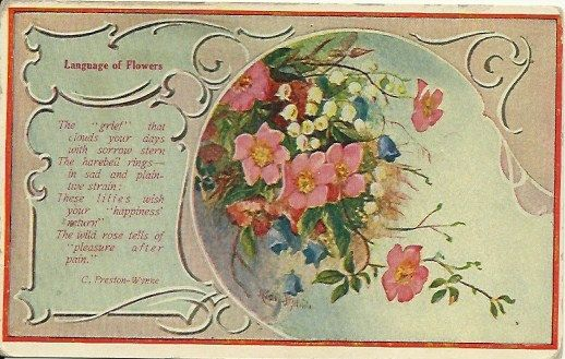 Antique Postcard Language of Flowers  Poem by postcardsintheattic, $5.95 on Etsy