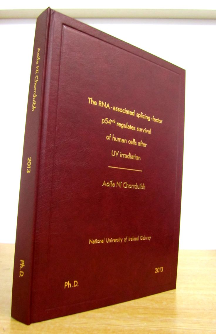 thesis in phd
