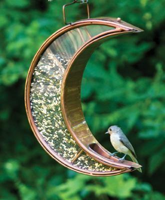 Love this birdfeeder!