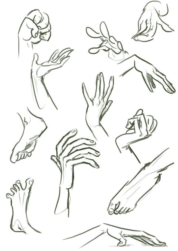 Character Design Hands : Pin by toni young on hands and bits pinterest