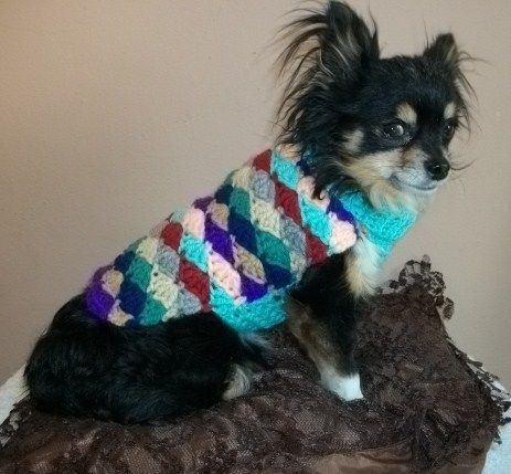 Dachshund and Small Dog Sweater Crochet Pattern