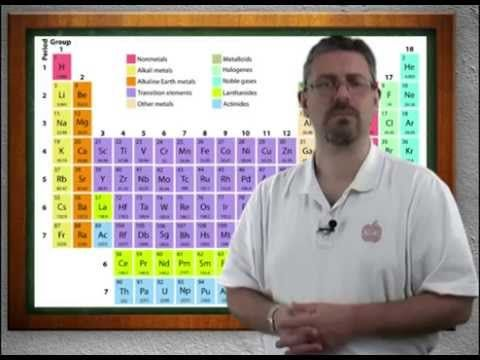 anatomy and physiology online
