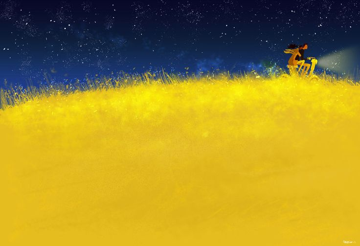 Fuzzy by PascalCampion on deviantART