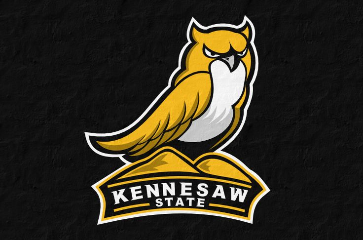 Kennesaw State concept logo (love the integration of the actual mountain where the owl is sitting)