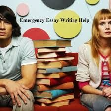 assignment essay writing