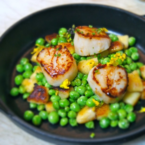 Seared Qualicum Scallops with Spring Peas & Pickled Ramp Gnocchi, one ...