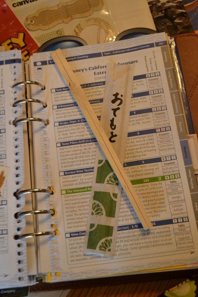 disneyland smashbook