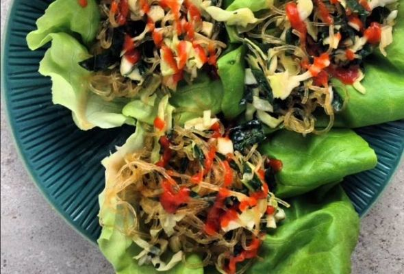 Sesame Kelp Noodle Salad Wraps | Recipe