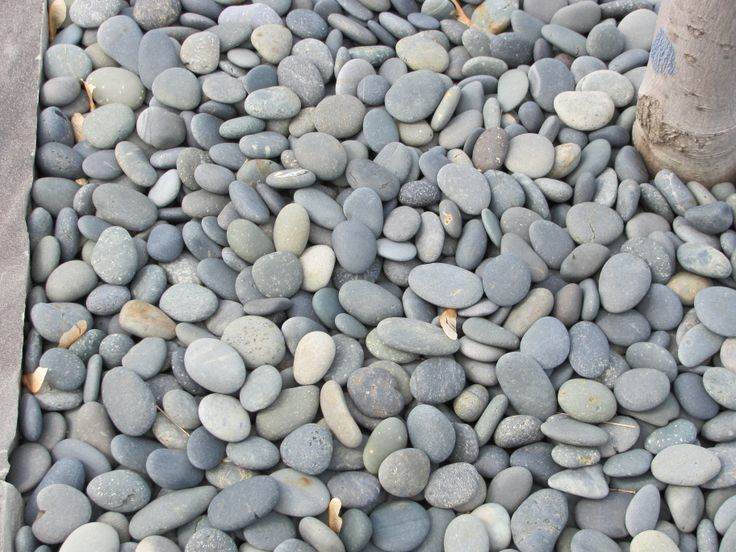 Mexican beach pebbles cobbles pebbles and specialty items pinter