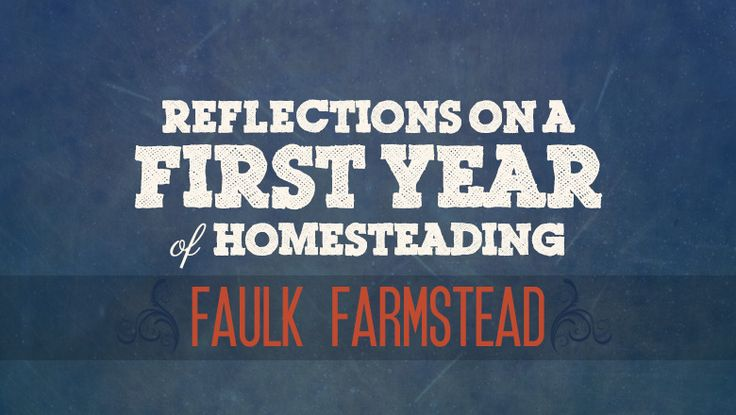 beats in ear Reflection on a First Year of Homesteading