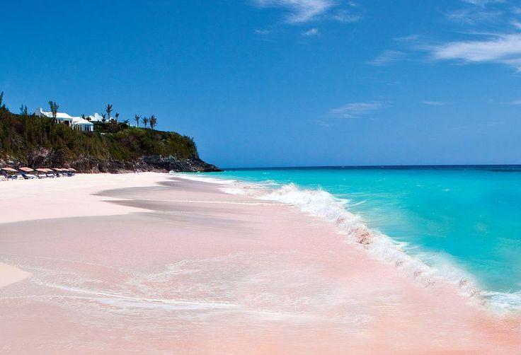 Pink sand beach bermuda islands travel pinterest for Bahamas pink sand beach
