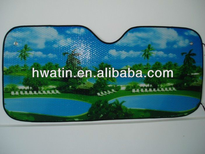 Custom car window screens