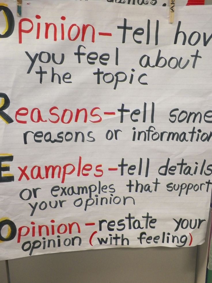 Student Examples of Persuasive Writing